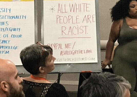 Virginia teacher says colleagues 'afraid' to oppose critical race theory